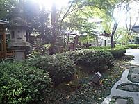 20111115_141308